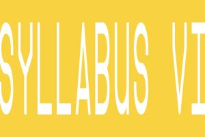 SYLLABUS VI – apply now!