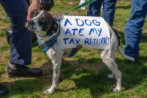 ONLINE: Toolkit: Tidy Taxes