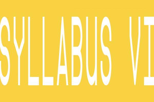 SYLLABUS VI – Apply now!