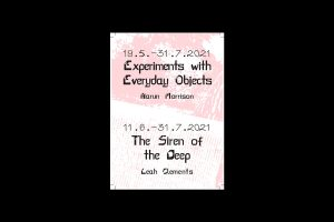 Harun Morrison, Leah Clements, Exhibition Guide