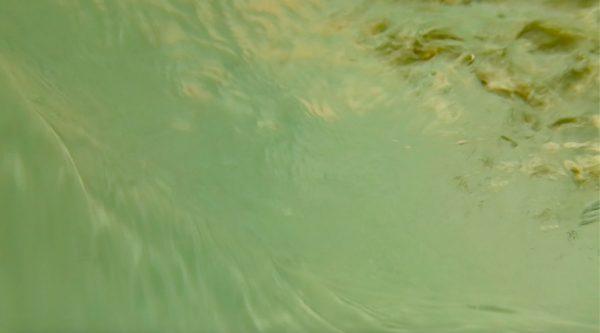 ONLINE Siren of the Deep, Screening Event