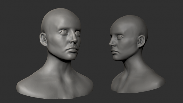 STEAMhouse Online: Introduction to Digital Sculpting