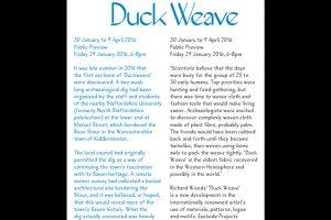 Richard Woods, Duck Weave, Exhibition Guide